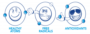 CoccoMio Antioxidants free Radical