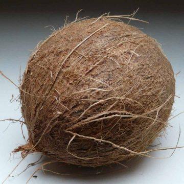 CoccoMio Raw Coconut Oil