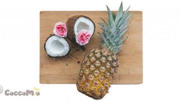CoccoMio Raw Coconut Pineapple Cracker Recipe