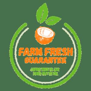 Freshness Guarantee 3